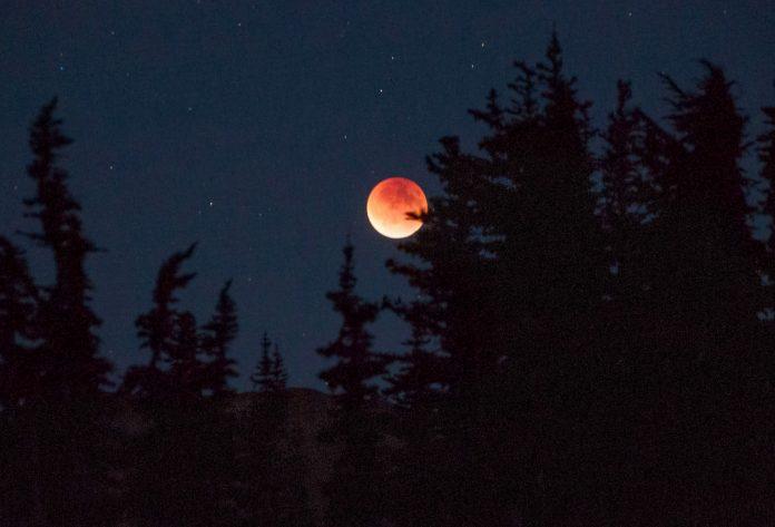 Eclipse Rick Klawitter