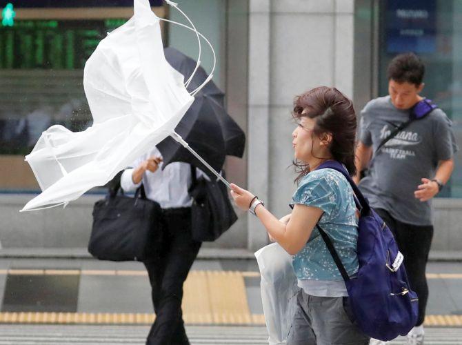 jebi typhoon