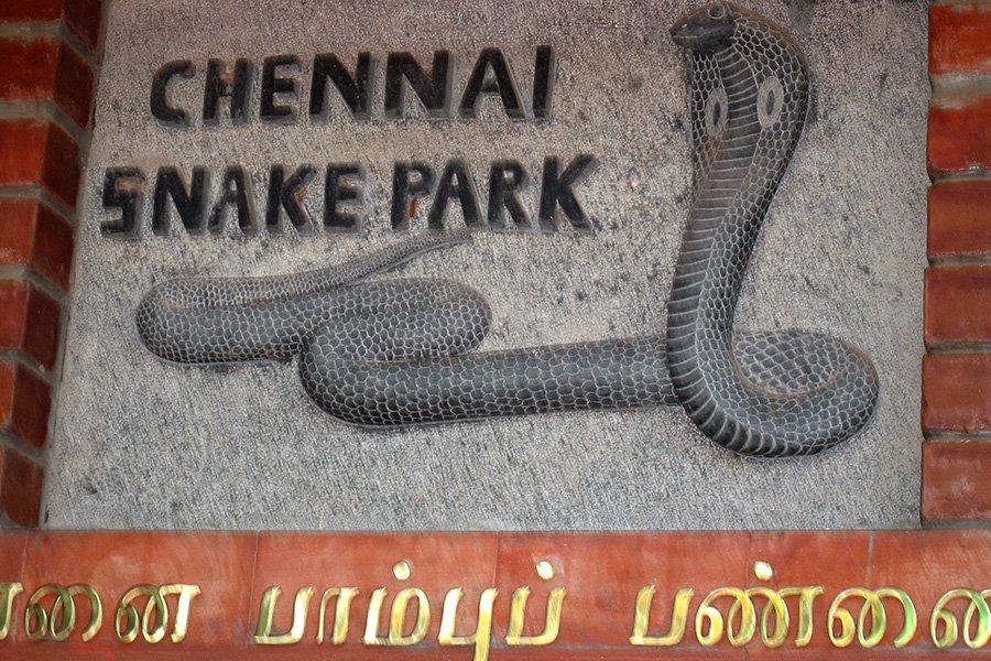 Chennai-Snake-Park-Source-Flicker