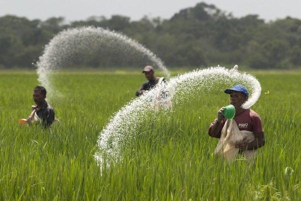 agriculture pesticides