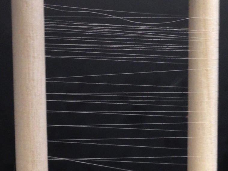 biosynthetic silk