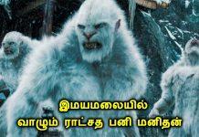 himalaya snow man
