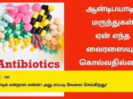 What-is-Antibiotics-How-It-Works