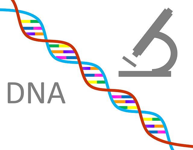 genetics dna1