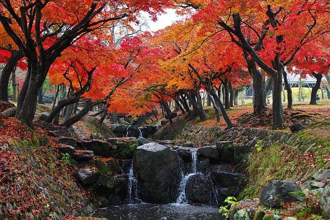 japan-nara-falls-autumn