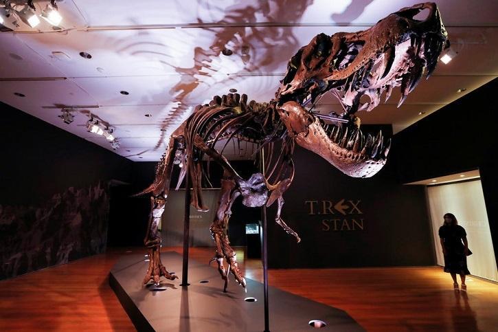 T-Rex டைனோசர்