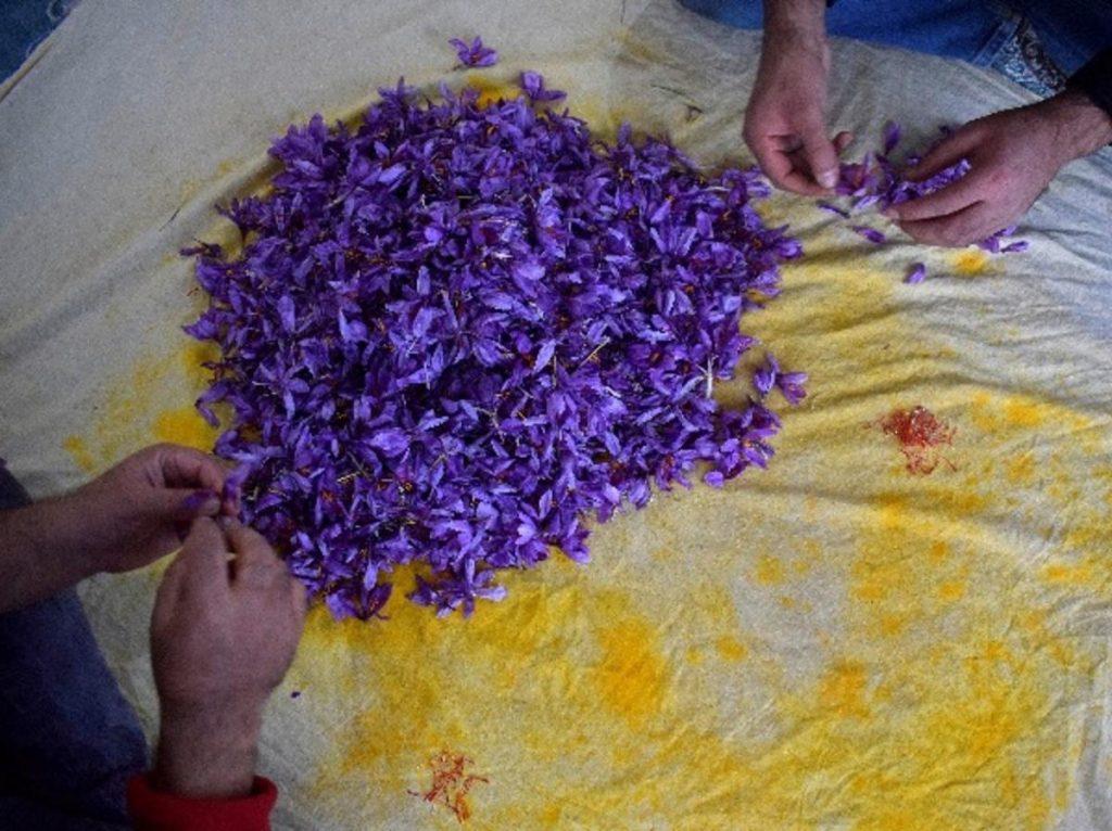 most expensive spice saffron 4 min